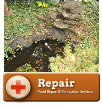 Pond & Water Feature Repair Services - Call Tom Now! 585-442-6373