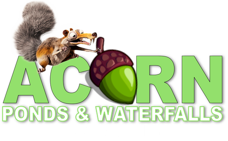 Water Feature/Pond Contractor Rochester NY - Acorn Ponds & Waterfalls