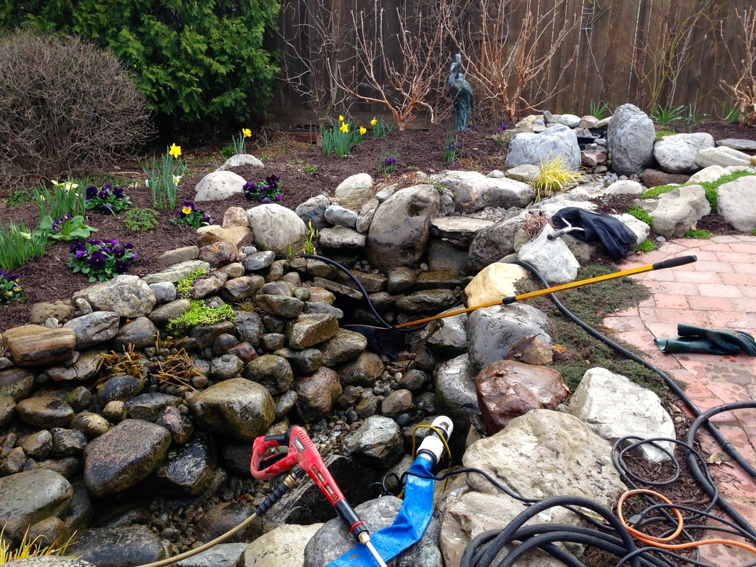 Spring Pond Cleaning & Start Up Services - Call Acorn Now!