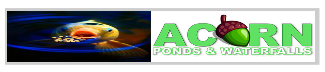 Pond /Water Feature Maintenance, Cleaning & Repair Services By Acorn - 585-442-6373