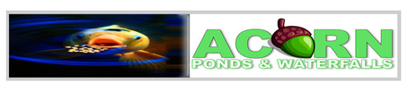 Pond skimmer repair & replacement services by Acorn Ponds & Waterfalls of Rochester NY