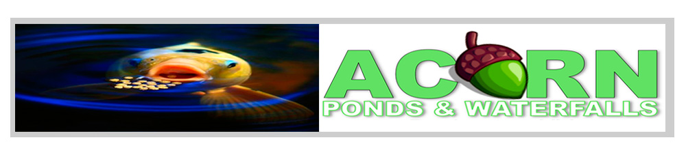 Natural (Farm) Pond Maintenance Service Contractors Of Rochester NY - Acorn Ponds