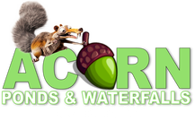 Pond & Water Feature Maintenance Contractor Of Rochester (NY) - Acorn Ponds & Waterfalls