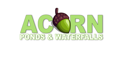 Looking For An Experienced Pond Contractor To Help You With Your Fish Pond? Call ACORN